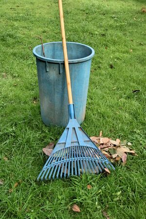 rake: blue rake on grass