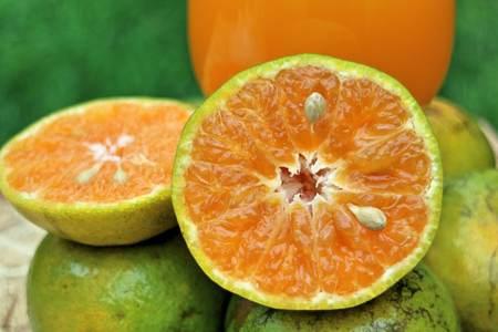 tangerine: tangerine orange juice Stock Photo