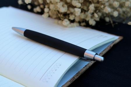 diaries: Pen on diary