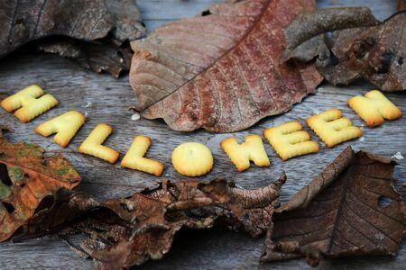 halloween message: Halloween message design on wooden background Stock Photo