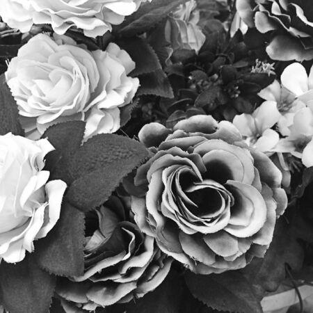 Gray of Artificial rose flower background for your design Reklamní fotografie - 127105980