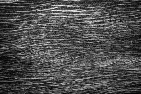 Black wood wall texture or background. 写真素材