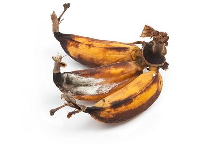 Mouldy Banana