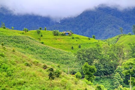 Beautiful landscape of hovel on mountains mist in the north of Thailand Stock Photo