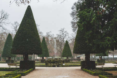 Conically cut yews in the south garden of the Wurzburg Court Garden, located on the edge of the baroque town fortifications with their massive supporting walls