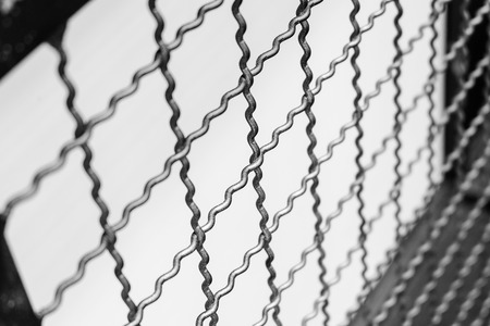 metal mesh: metal mesh fence Stock Photo