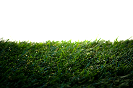 Green artificial grass on a white background