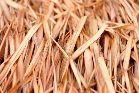 Roof from dried leaves of the nipa palm close up background