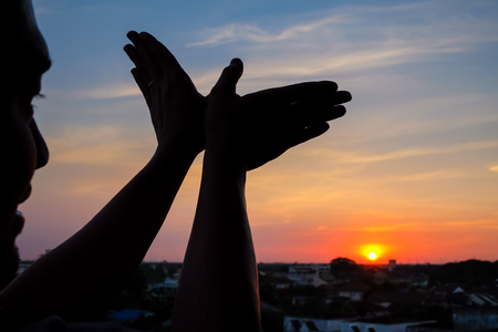 silhouette of a hand gesture like bird flying on a background sunset