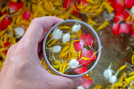 Jasmine roses and marigold petals in silver bowl in hand of man,Songkran festival in Thailand