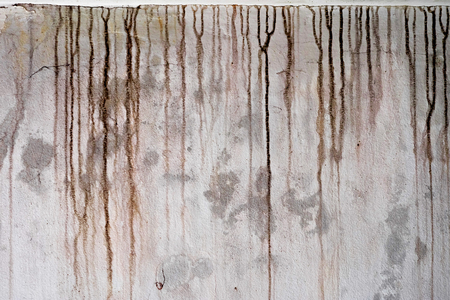 The black stains on the cement wall are dirty. Standard-Bild - 113245822