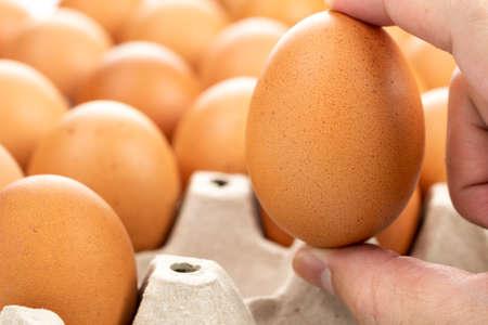 Fresh chicken eggs in the hands of men