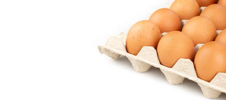 Eggs are freshly placed in a panel on a white background Archivio Fotografico