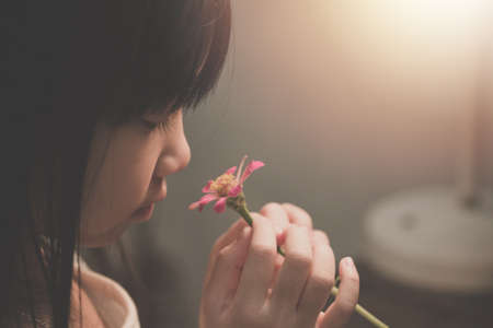 Asian child girl is holding and looking at a pink flower, vintage tone Stock Photo