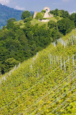 crus: grand cru vineyard, Thann, Alsace, France