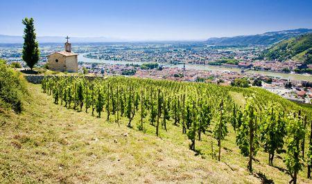 crus: grand cru vineyard and Chapel of St. Christopher, L´Hermitage, Rhône-Alpes, France