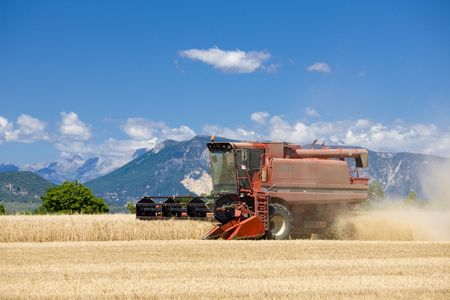 harvesters: grain harvest, Alpes-de-Haute-Provence Departement, France Stock Photo