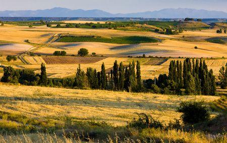 castile leon: landscape near Penaranda de Duero, Burgos Province, Castile and Leon, Spain