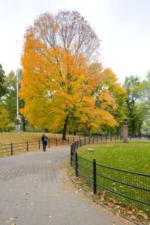 autumnal Central Park, New York City, USA Stock Photo - 5635060