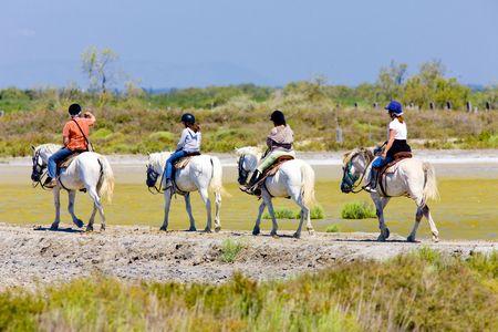 regional: caballos de equitaci�n, parque regional de Camargue, Provenza, Francia