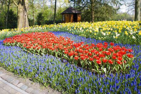 lisse: Keukenhof Gardens, Lisse, Nederland