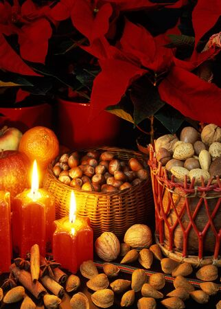Christmas still life Stock Photo - 6087536