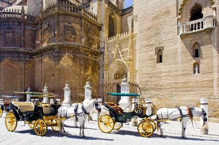 carriages in front of Cathedral of Seville, Andalusia, Spain