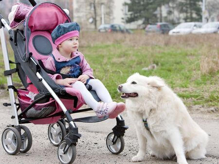 toddler sitting in a pram on walk with a dog photo