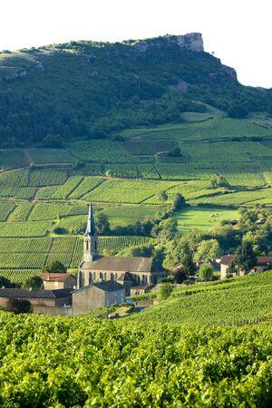viniculture: Vergisson with vineyards, Burgundy, France