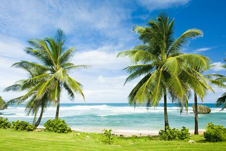 greater: Bathsheba, East coast of Barbados, Caribbean