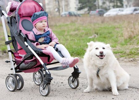 defenceless: toddler sitting in a pram on walk with a dog