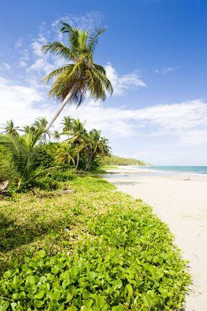 grenada: Sauteurs Bay; Grenada