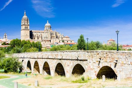 cathedral and Roman bridge of Salamanca, Castile and Leon, Spain