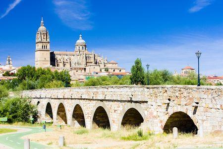 Kathedrale und römische Brücke von Salamanca, Kastilien und Leon, Spanien