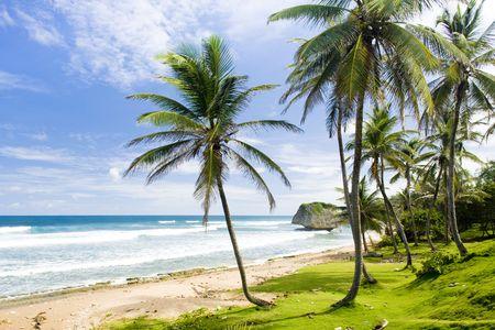 barbados: Bathsheba; East coast of Barbados; Caribbean Stock Photo