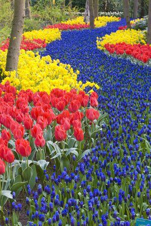 lisse: Keuken hof tuinen, Lisse, Nederland
