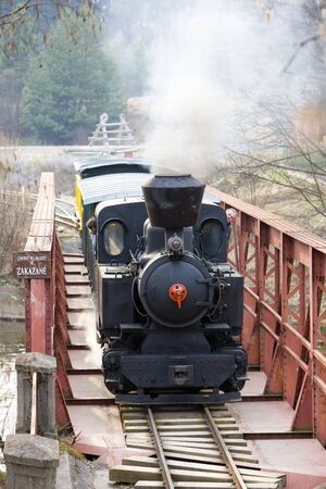 last day of service of CKD steam locomotive n. 5 (1.4.2008), Ciernohronska Railway, Slovakia Stock Photo - 6939514