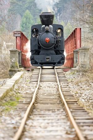 narrow gauge railroad: last day of service of CKD steam locomotive n. 5 (1.4.2008), Ciernohronska Railway, Slovakia