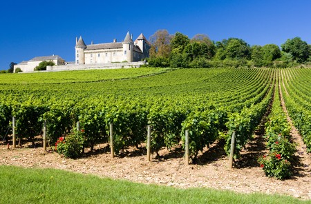 viniculture: Chateau de Rully with vineyards, Burgundy, France