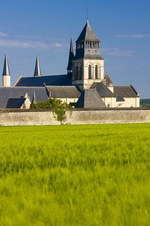 friaries: Fontevraud Abbey, Loire Valley, France Stock Photo