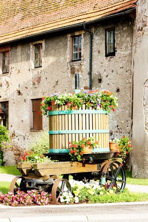 winepress: wine-press, Chatenois, Alsace, France