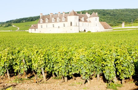 blanc: Clos Blanc De Vougeot Castle, Burgundy, France Stock Photo