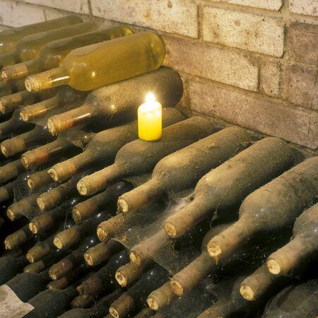 Frantisek Polehna winery, wine cellar, Blatnice pod svatym Antoninkem, Czech Republic Stock Photo - 7421304