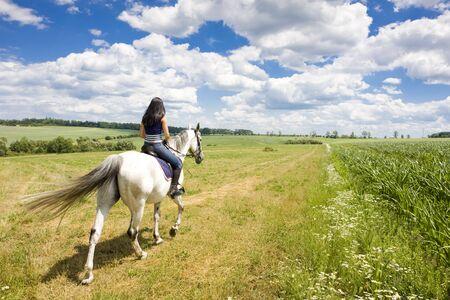 mujer en caballo: ecuestre a caballo  Foto de archivo
