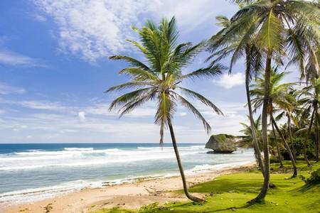 the silence of the world: Bathsheba, Eastern coast of Barbados, Caribbean Stock Photo