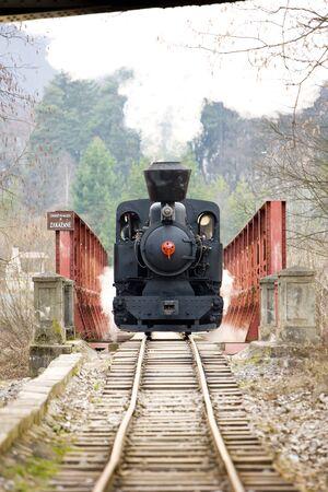 logging railroads: ultimo giorno di servizio di CKD locomotiva a vapore, ferrovia Ciernohronska, Slovacchia  Archivio Fotografico