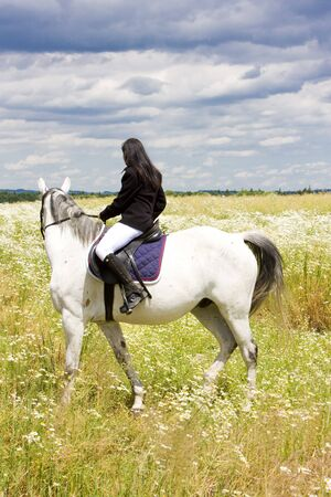 equestrian on horseback photo
