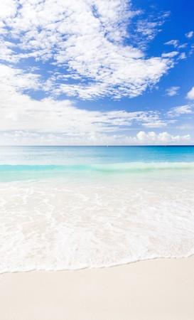 destination scenic: Enterprise Beach, Barbados, Caribbean
