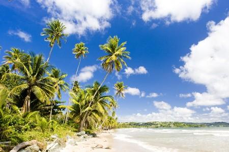Rockly Bay, Tobago photo