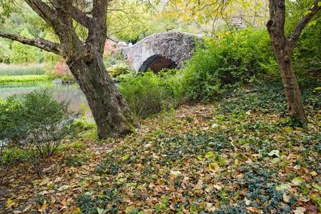 The Pond, Central Park, New York City, USA Stock Photo - 7752358